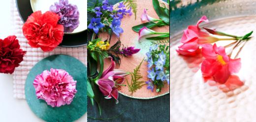 Flores y plantas Mayo