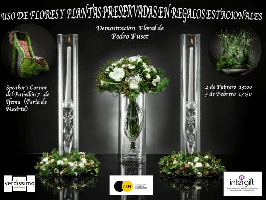 Flores y Plantas Estacionales